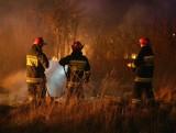 Uważajcie w lasach! Wydano II stopień ostrzeżenia pożarowego. Jest bardzo sucho!