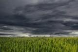 Lubelskie: IMGW ostrzega przed nagłym załamaniem pogody. Możliwe burze z gradem
