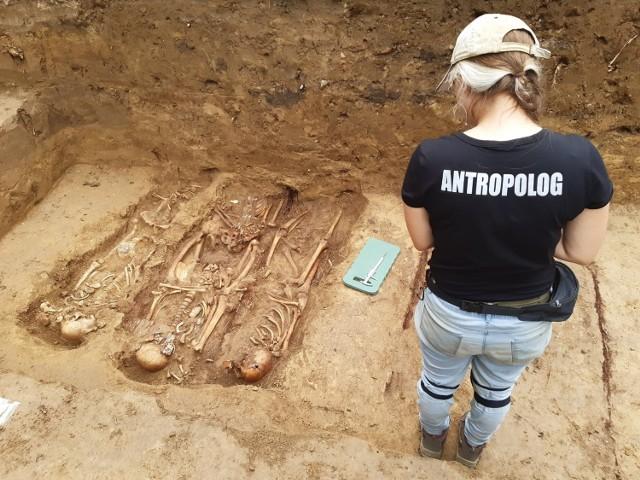 Od półtora tygodnia trwają prace archeologiczne na cmentarzu z okresu I wojny światowej, przy ul. Kasztanowej w Przemyślu.