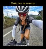 Dzień Roweru 2020. Zobaczcie najlepsze rowerowe memy [GALERIA MEMÓW]