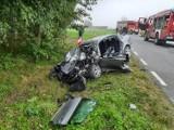 Wypadek w Dobruchowie na drodze nr 710 z Kwiatkowic do Szadku ZDJĘCIA