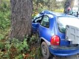 Sławno - Sławsko: Opel uderzył - bokiem - w przydrożne drzewo. Jedna osoba ranna ZDJĘCIA