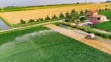 W ciągu 10 lat w Polsce ubyło 13% gospodarstw. Wstępne dane z Powszechnego Spisu Rolnego 2020