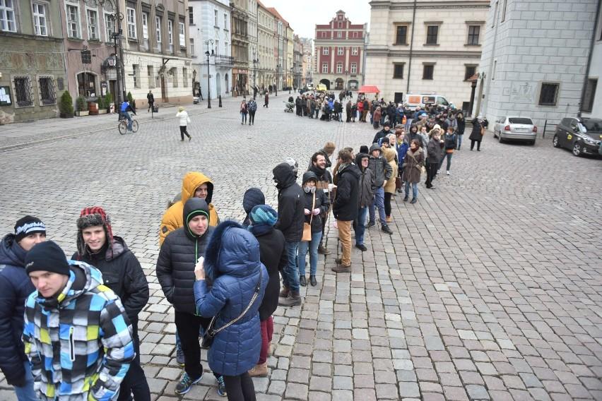 Darmowe choinki na Starym Rynku w Poznaniu