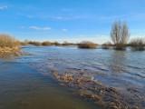 Woda w Wiśle w gminie Cedry Wielkie wysoka. Podchodzi pod wały w Leszkowach i Kiezmarku |ZDJĘCIA