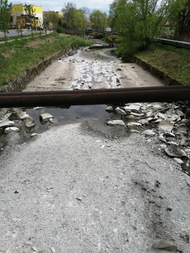 Wieprzówka w Andrychowie 26 kwietnia 2020 r.