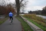 Najlepsze trasy do uprawiania sportu w Kaliszu. Ścieżki pieszo-rowerowe na wałach Matejki i Piastowskim ZDJĘCIA