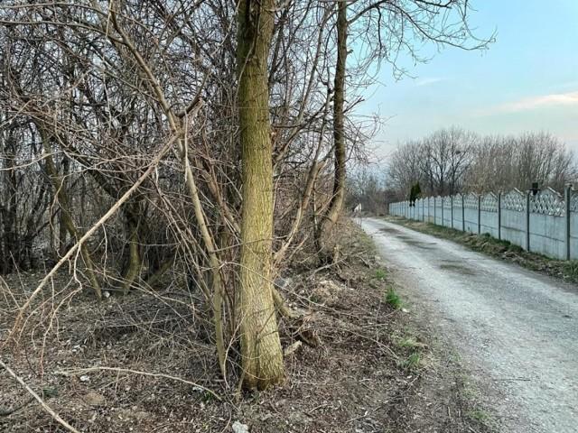 Dzikie wysypisko przy cmentarzu komunalnym w Sandomierzu zostało posprzątane. Teren  został objęty całodobowym  monitoringiem
