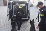 Policja otrzymała nowy samochód oraz psa tropiącego [FOTO, FILM]