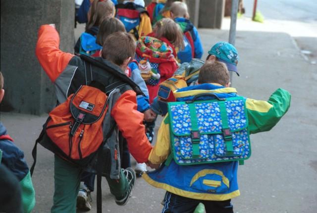 3 do 5 kg noszą na plecach nasze dzieci.