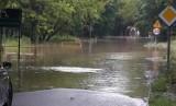 Piekary Śląskie: Intensywne opady deszczu. Ul. Pod Lipami została zalana