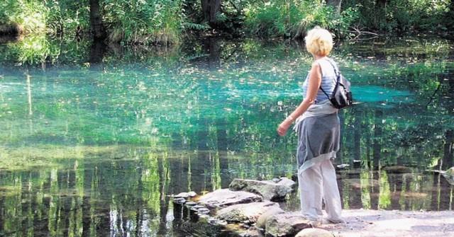 Rezerwat o wybitnych walorach krajobrazowych, położony w dolinie Pilicy, , w południowo wschodniej części  Tomaszowa Maz.  Główny kompleks wodonośny stanowią spękane wapienie jurajskie, z których wytryska woda przybierająca niebiesko-błękitno-zieloną barwę.  Dodatkowo uroku   nadają pulsujące gejzery z piasku podrzucanego przez źródlaną wodę.