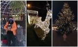 Święta Bożego Narodzenia 2020 w Pucku: nasi Czytelnicy na pamiątkowych, świątecznych zdjęciach w Pucku i powiecie puckim   ZDJĘCIA