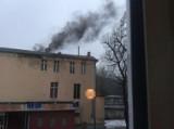 Czym palą w Pile w piecach?