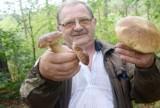 Grzyby na Śląsku, Jurze, w Zagłębiu, Beskidach i okolicach Rybnika - poznaj miejscówki! Sprawdź gdzie warto się wybrać