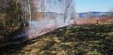 Barcice. Strażacy już gaszą wypalane trawy. Nastała wiosenna aura [ZDJĘCIA]