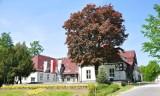 Zwiedzamy Wielkopolskę. Centrum Promocji Lasów Państwowych w Goraju