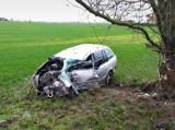 Wypadek w Antoninie! 19-latek rozbił się na drzewie