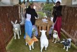 W maleńkiej wsi w gminie Trzebielino bożonarodzeniowa szopka cieszy każdego. Warto tam zajrzeć