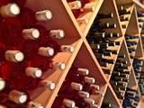 TOP 13. Oto polecane winnice na Dolnym Śląsku (ADRESY)