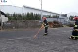 Ćwiczenia z ENEA Operator