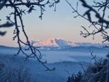 Muszyna. Niesamowite ośnieżone Tatry widziane z góry Malnik. Zima na Sądecczyźnie nie odpuszcza [ZDJĘCIA]