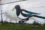 Tor kolarski w Szczecinie z tajemniczym muralem. Jakie jest przesłanie?