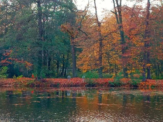 Uroki powiatu nowosolskiego, okolic Zielonej Góry i Świebodzina. Wybierzcie się na wirtualny spacer z Katarzyną Lotką. Widzi piękne zakątki. Kliknij w zdjęcie i przejdź do galerii.