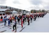 Jakuszyce: Tłumy na biegu Salomon Nordic Sunday