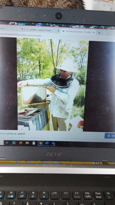 Światowy Dzień Pszczół w szkole w Różynach. Zdalnie o pożytecznych pszczołach |ZDJĘCIA