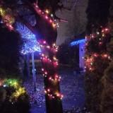 Pruszcz Gdański. Świąteczne iluminacje mieszkańców wprowadzają magiczny klimat |ZDJĘCIA