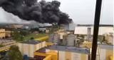 Pożar na terenie Elektrowni Bełchatów. 16 zastępów strażaków walczy z ogniem