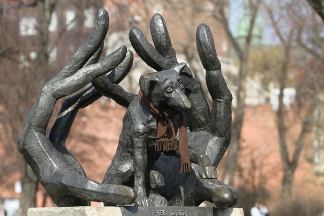 Pod poświęconym Dżokowi pomnikiem wiele bezdomnych zwierząt znalazło nowych właścicieli