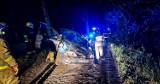 Gmina Dolice. Kierujący renault wypadł z trasy i uderzył w drzewo. 32-latek miał prawie 2 promile alkoholu w wydychanym powietrzu