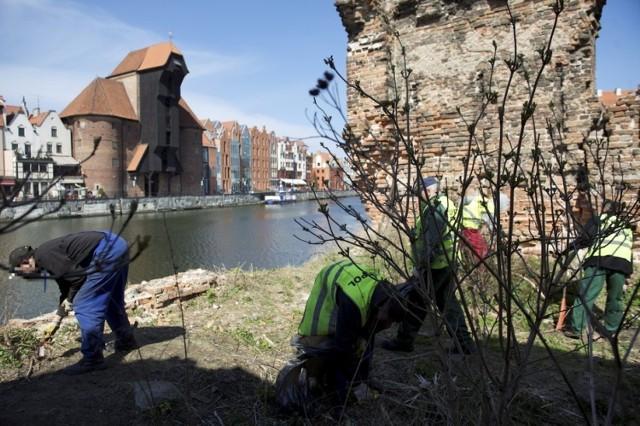 Więźniowie posprzątają Gdańsk