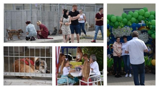 Trzecie urodziny Centrum Opieki nad Zwierzętami przy ul. Przytulnej w Grudziądzu.