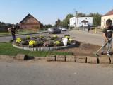 Zbudowali sobie rondo w Żelistrzewie. Pilnuje go czeski Krecik. W gminie Puck przebudowali skrzyżowanie ulic Puckiej  i Lipowej | ZDJĘCIA