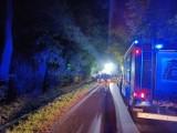 Tragiczny wypadek na Mazowszu. Auto wjechało w drzewo i spłonęło. Nie żyje czterech nastolatków