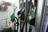 Szczecin. Najpopularniejsza benzyna jest znowu prawie najdroższa w Polsce
