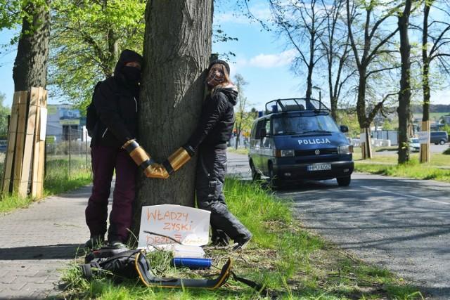 By wycinka nie postępowała dalej, w środę do drzew w Suchym Lesie przykuli się aktywiści z Zielonej Fali i Federacji Anarchistycznej.   Kolejne zdjęcie -->