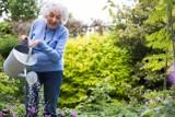 ABC nawadniania ogródka. Jak prościej, skuteczniej i taniej nawadniać swoją działkę?