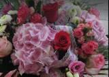 TOP 10 najlepiej oceniane kwiaciarnie w Starachowicach i Brodach według opinii w Googlu