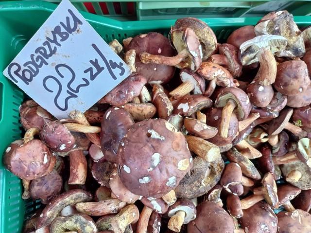 Ceny grzybów na targowisku w Katowicach