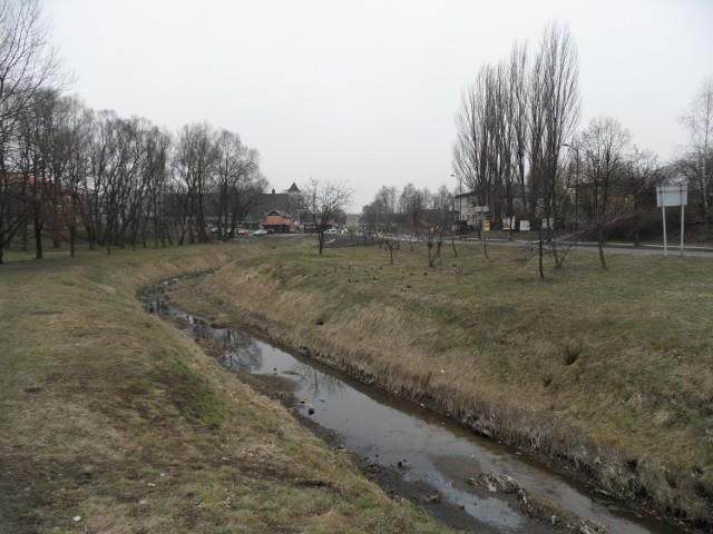 Teren zielony przy ul. św. Wojciecha może być miejscem gdzie powstanie nowy market w Mikołowie.