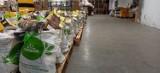 Dwieście świątecznych paczek trafiło do lublinian w czasie pandemii