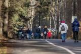 Prognoza dla Bydgoszczy i regionu. Pogoda na koniec lutego i początek marca 2021