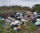 Niektórzy na majówce odnajdywali piękne krajobrazy, a inni... góry śmieci! Skąd wzięły się te odpady w gminie Sulechów?