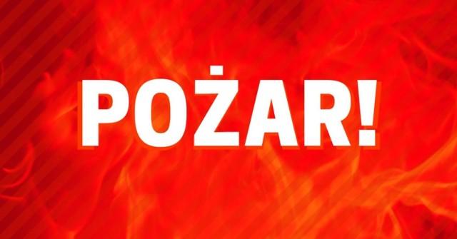 Pożar w zakładzie produkcji mebli w Wolnym Dworze niedaleko Skarszew