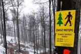 Uwaga! Utrudnienia na zielonym szlaku z Bystrej na Klimczok. Leśnicy wytyczyli alternatywną trasę