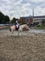 Grudziądz. Zawody jeździeckie w Ośrodku Jeździeckim Rywal. Kto w nich zwyciężył? [zdjęcia]